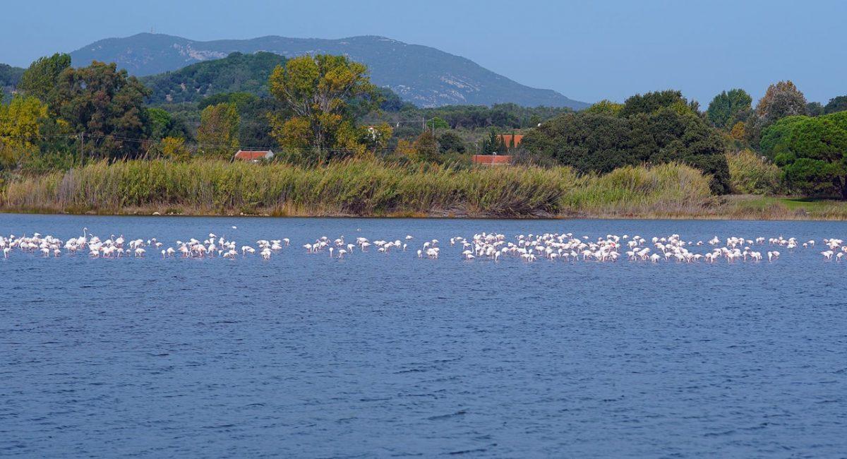 Lake Korission-min